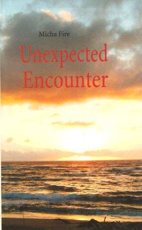 Unexpected Encounter Cover